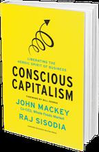 Conscious Consulting